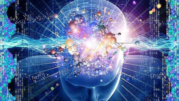 Ученые выявили источник врожденного интеллекта