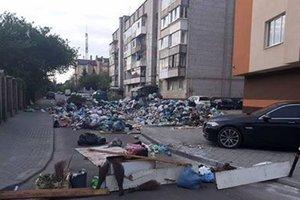 Стихийные свалки на улицах Львова атакуют огоромные крысы