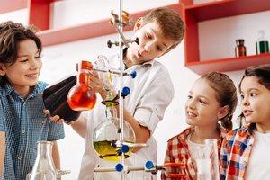Альтернативное базовое образование в Украине: что такое эко-школы и чему там учат детей