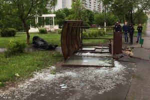 Жертв урагана в Москве и области стало еще больше