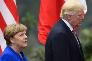 """""""Совершенно фантастические"""": Трамп оценил свои отношения с Меркель"""