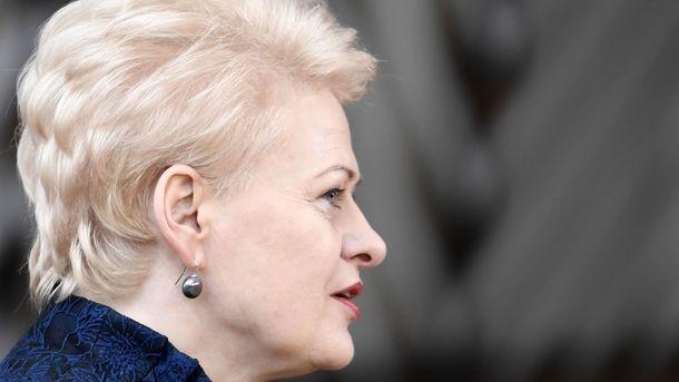 Президент Литвы: Российская Федерация - главная проблема для стран Балтии