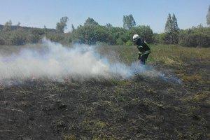 Опасные пожары: где под Киевом на выходных горела трава