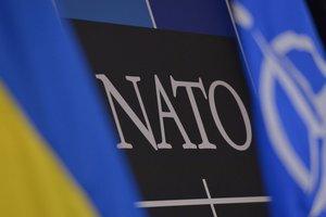 Фриз назвала пять причин, почему Украине нужно вступать в НАТО