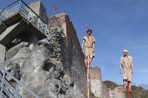 Замок Дракулы закрыли для туристов из-за медведей