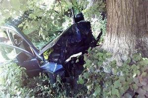 Смертельное ДТП в Винницкой области: двое пенсионеров въехали в дерево