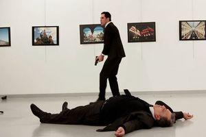 В Турции установили предполагаемых заказчиков убийства российского посла - СМИ
