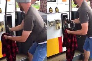 Внимательный американец спас змею, заползшую внутрь заправочного автомата