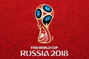 Правозащитная организация сообщила о нарушениях прав человека на стройке стадиона к ЧМ-2018 в России