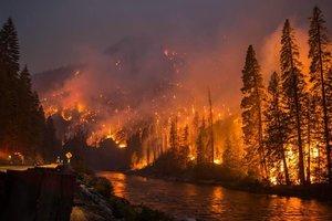 Лесной пожар в Португалии: количество жертв растет