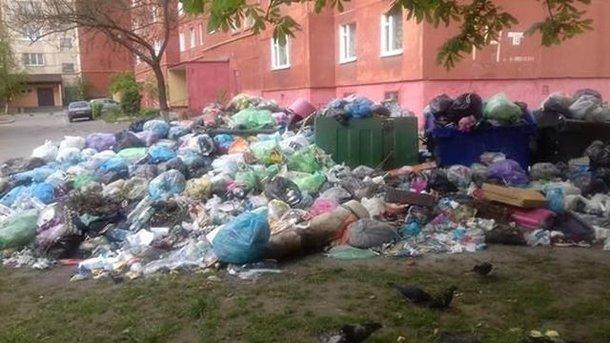 "Мусор ""забарикадировал"" город. Фото: Т.Самотый, соцсети"