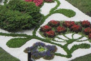 С начала года в Киеве высадили 3,5 млн цветов