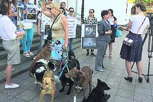 В Одессе митинговали в защиту хвостатых