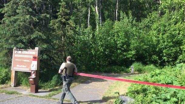 НаАляске медведь загрыз 16-летнего участника забега
