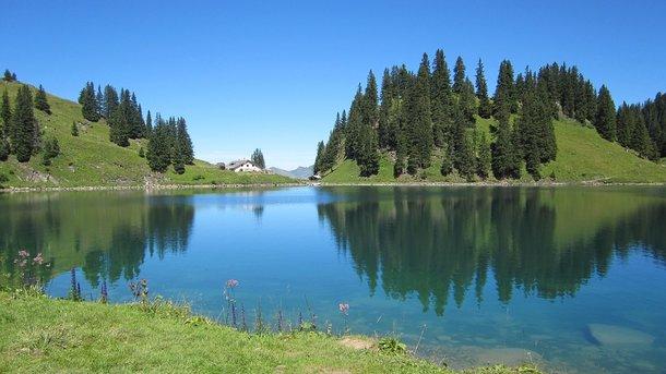 Оформить озеро на участке своими руками реально: советы по 76