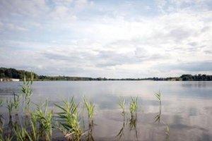 В Киеве на озере утонул подросток