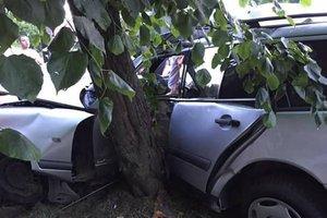 """Во Львове водитель на """"Мерседесе"""" пытался спасти ребенка и влетел в дерево"""