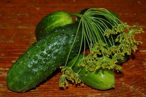 Пять поводов есть огурцы почаще и три необычных рецепта из них