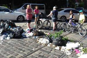 Вонь и мухи: во Львове под открытым небом накопилось 12 тысяч тонн мусора