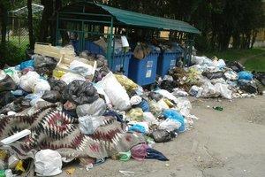 Финиш мусорного бедствия: из Львова начинают вывозить отходы