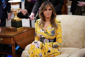 Меланья Трамп пришла на встречу с премьер-министром Индии в пестром платье от Pucci