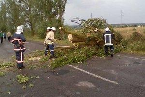 На Украину обрушилась стихия: без света остались более 740 населенных пунктов