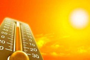 В столице Болгарии пять человек погибли из-за жары