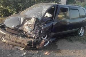 Ужасное ДТП в Херсонской области: погибли отец и сын