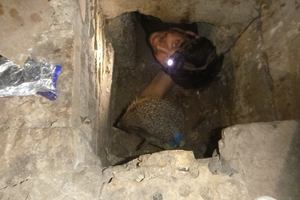 В Киеве спасли ежика, которого дети бросили в подвал