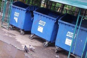 Львов на 70% очистили от мусора