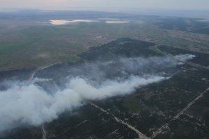 Лесной пожар в Херсонской области: привлечена авиация