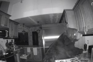 The bear got into the house of a resident of Colorado and five hours of trashed the kitchen
