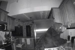 Медведь забрался в дом к жителю Колорадо и пять часов громил кухню