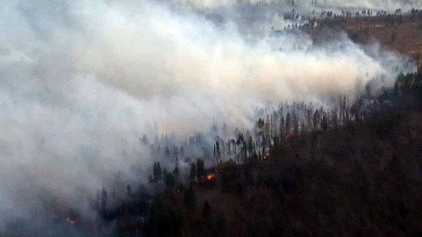 Вканадской английской  Колумбии из-за лесных пожаров эвакуировано 14 тыс.  человек