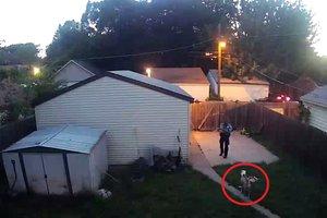 В США полицейский приехал на вызов и расстрелял двух собак
