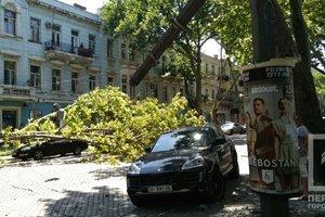 В Одессе упавшее дерево обрушило электроопору и задело автомобиль