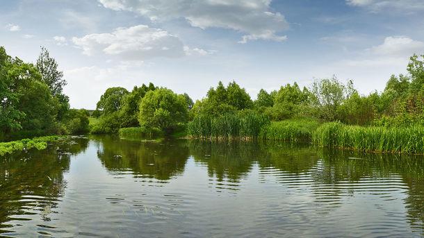ВТернопольской области потонул рыбак при попытке спасти ребенка