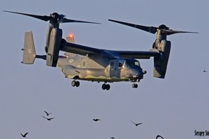 """""""Диковинные птички"""": в Украину впервые прилетели конвертопланы США"""