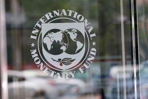 Валютные долги за 23 года: сколько Украина получила от МВФ и что придется вернуть