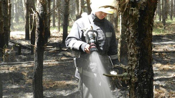НаХерсонщине практически  4  часа тушили масштабный пожар в огромном  лесу