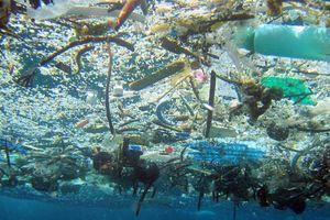 В Тихом океане обнаружено очередное гигантское скопление пластика