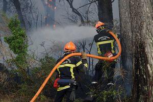 В Черногории бушуют мощные лесные пожары