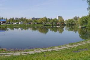 В Киеве ночью из озера спасли мужчину