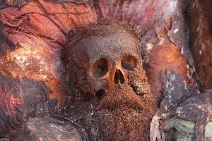 Ученые объяснили, почему у эксгумированного Сальвадора Дали остались целыми усы