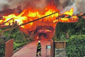 """Масштабный пожар в Одессе на пляже """"Ланжерон"""": все подробности"""