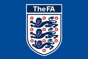 В Англии будут дисквалифицировать игроков на 5 лет за нападение на арбитров