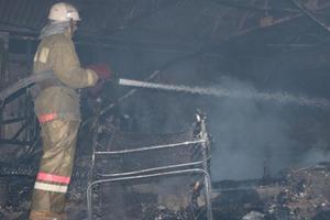 Масштабный пожар в Киеве: ночью горела теплица