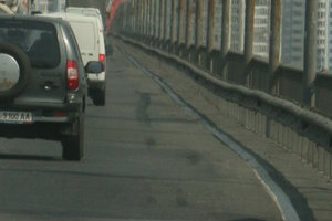 Кто в Киеве должен убирать трупы животных с дороги