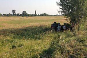 Жуткое ДТП в Днепропетровской области: погиб подросток