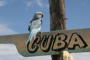 На Кубе дипломатов США атаковали таинственным устройством – СМИ